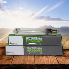 BOMBILLA ORTICA HPS - AGRO 600W (25 uds/caja) - CREC. Y FLOR.