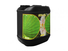 ATA - XL 5 L ATA